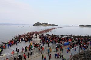 진도 신비의 바닷길 축제,전라남도 진도군,지역축제,축제정보